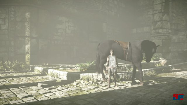 Screenshot - Shadow of the Colossus (PlayStation4Pro) 92558893