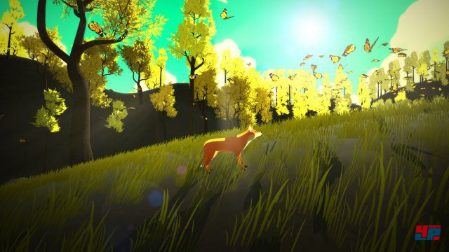 Screenshot - The First Tree (PC)