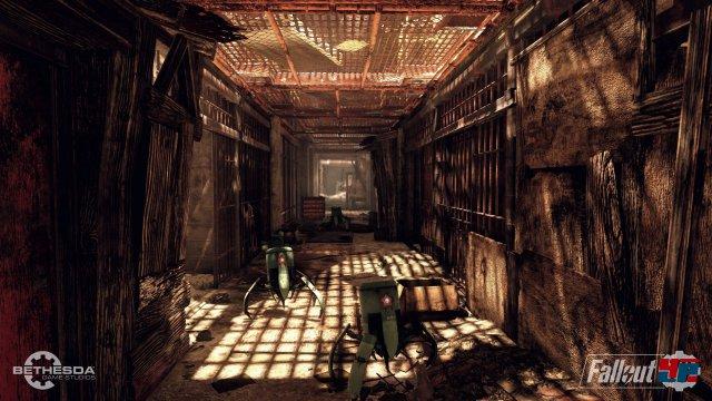 Screenshot - Fallout 76 (PC) 92567655