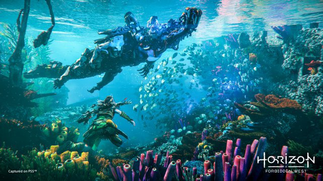 Screenshot - Horizon Forbidden West (PlayStation5) 92642763