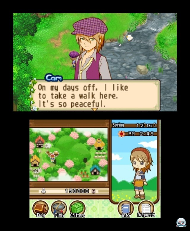 Screenshot - Harvest Moon: The Tale of Two Towns (3DS) 2232194