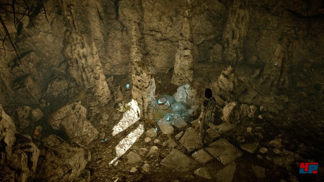 Screenshot - Shadow of the Colossus (PlayStation4Pro) 92558905