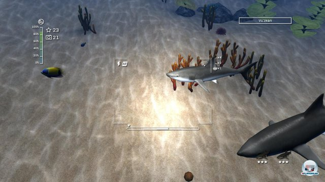 Screenshot - Reef Shot - Die Tauch-Expedition (PC) 92458692