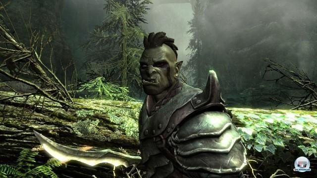 Screenshot - The Elder Scrolls V: Skyrim (PC) 2218027