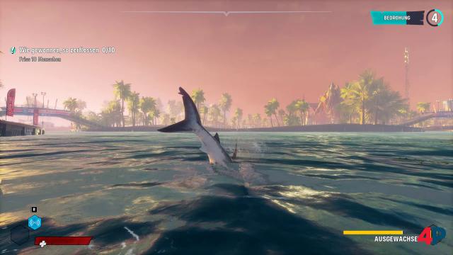 Screenshot - Maneater (PC) 92613949