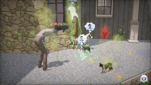 Screenshot - Die Sims 3: Einfach tierisch (PC) 2275422