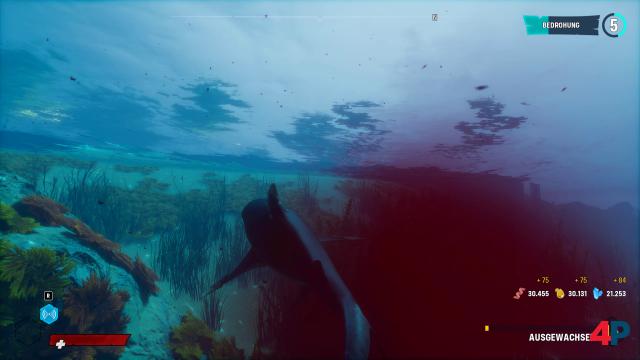 Screenshot - Maneater (PC) 92613981