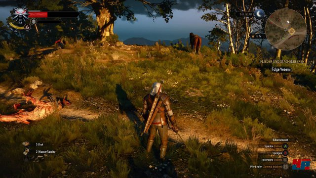 Screenshot - The Witcher 3: Wild Hunt (PC) 92504923