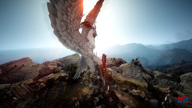 Screenshot - Black Desert Online (PC) 92532548