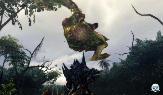 Screenshot - Monster Hunter 3 Ultimate (Wii_U) 92449577