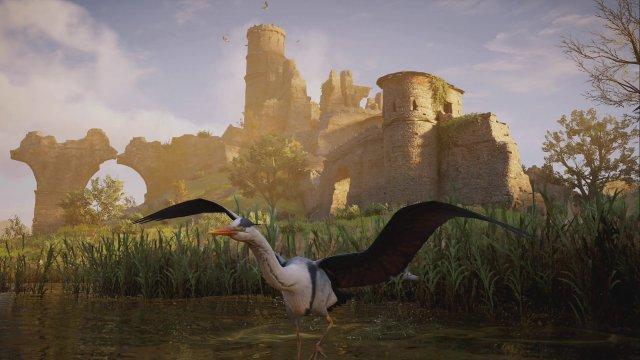 Foto-Modus, mit Graureiher: Ein Foto-Modus ist vom Start weg im Spiel verfügbar - vielen Figuren, Orte und Tiere halten dem Detailblick stand, manche Vögel (nicht dieser Reiher) sehen aber grausig aus.