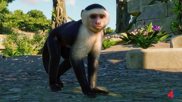 Screenshot - Planet Zoo (PC)