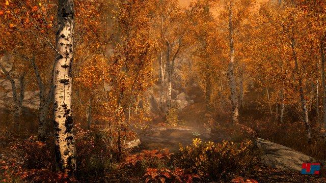 Screenshot - The Elder Scrolls 5: Skyrim (PS4) 92534674