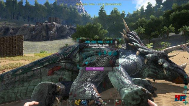 Screenshot - ARK: Survival Evolved (PC) 92512227