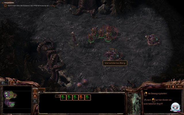 Screenshot - StarCraft 2: Heart of the Swarm (PC) 92457076