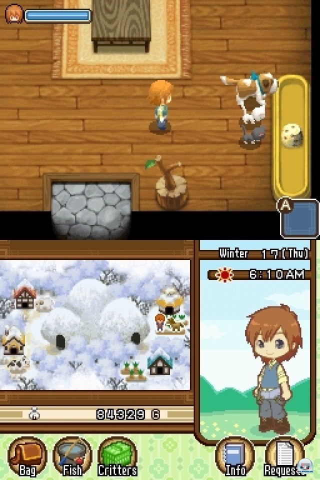 Screenshot - Harvest Moon: The Tale of Two Towns (NDS) 2231962