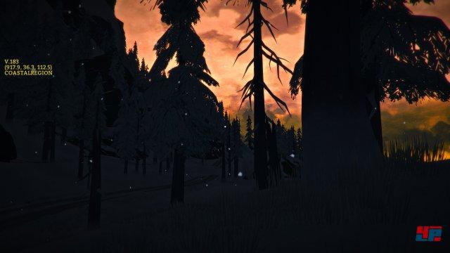 Screenshot - The Long Dark (PC) 92497390