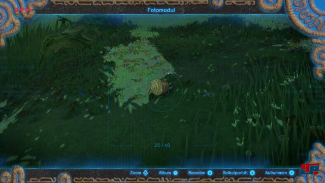 Screenshot - The Legend of Zelda: Breath of the Wild (Switch) 92541338