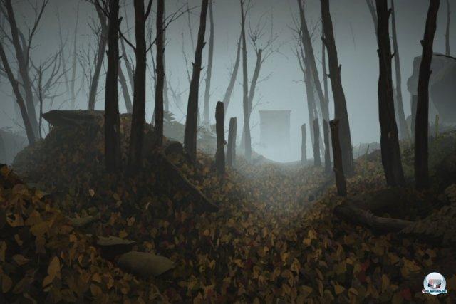 Auch wenn der nebelverhangene Wald endlos erscheint, gibt es nur wenig zu entdecken.