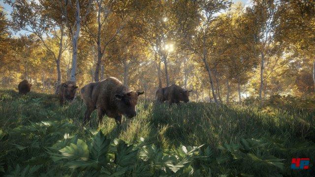 Screenshot - theHunter: Call of the Wild (PC) 92537059