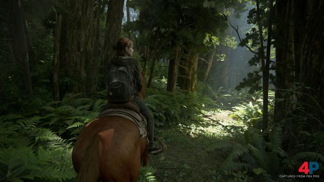 Screenshot - The Last Of Us Part 2 (PS4) 92609865