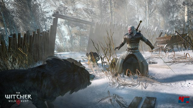 Screenshot - The Witcher 3: Wild Hunt (PC) 92491493