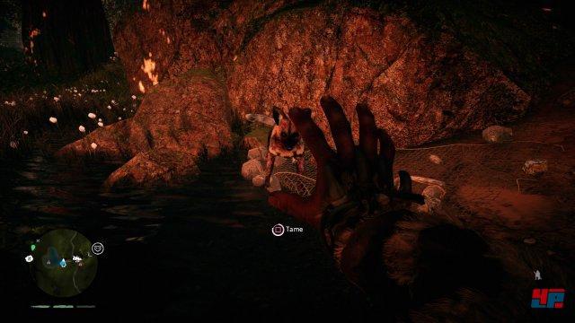 Screenshot - Far Cry Primal (PlayStation4) 92520638