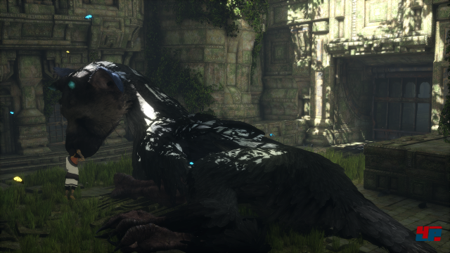 Screenshot - The Last Guardian (PS4) 92537324