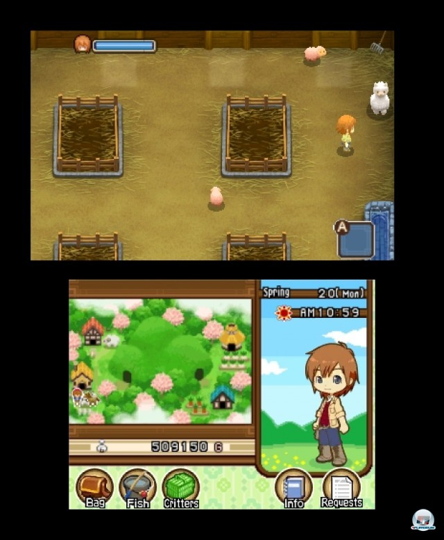 Screenshot - Harvest Moon: The Tale of Two Towns (3DS) 2232268