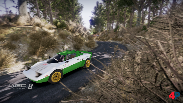 Screenshot - WRC 8 - The Official Game (PC) 92596395