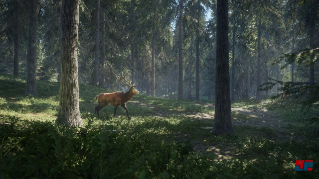Screenshot - theHunter: Call of the Wild (PC) 92537062