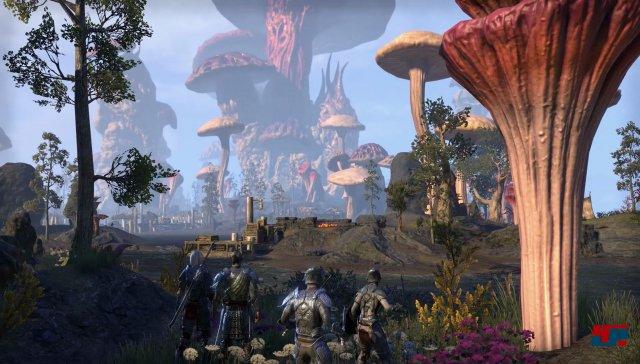 Screenshot - The Elder Scrolls Online: Morrowind  (PC)