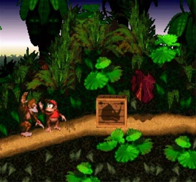 Donkey Kong Country <br><br> Neben Loren-Fahrten durch dunkle Minenschächte ist das affige Duo meistens auf der Sonnenseite des Dschungel-Lebens: Da wird sich zu lockerer Musik an Lianen über Abgründe geschwungen, mit Opa über die Videospiel-Vergangenheit philosophiert oder Bananen-Partys veranstaltet. Manchmal würde man gerne tauschen...    2076848