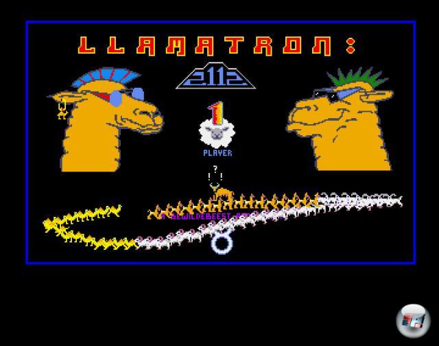 Llamatron 2112<br><br>  Jeff Minter – wer diesen Namen kennt, weiß, was ihn erwartet. Vor der Veröffentlichung von Space Giraffe für Xbox Live Arcade war dieses Robotron-Remake das durchgeknallteste Spiel des Psychedelic-Großmeisters. Bei diesem Spiel wäre eine beigelegte Epilepsie-Warnung mehr als berechtigt gewesen. Der Bildschirm blitzt im Zehntelsekundentakt in sämtlichen Farben, die der Grafik-Chip der antiquierten Rechner hergibt. Ballert ihr auf die Gehirne, Hamburger, grüne Igel und andere skurrile Feinde, knistern geisteskrank verzerrte Schreie aus den Boxen. Glücklicherweise fällt der Schwierigkeitsgrad moderater aus als beim Vorbild Robotron. Obwohl die Homecomputer damals nur einen Joystick und einen Feuerknopf besaßen, wurde die Steuerung gut umgesetzt: Euer Lama schießt automatisch in seine Blickrichtung. Haltet ihr den Knopf gedrückt, wird die Schussrichtung arretiert und ihr feuert z.B. immer nach links, auch wenn ihr in eine andere Richtung lauft. 1716784