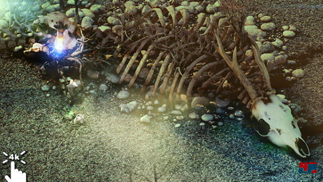 Screenshot - Beautiful Desolation (PC) 92539744