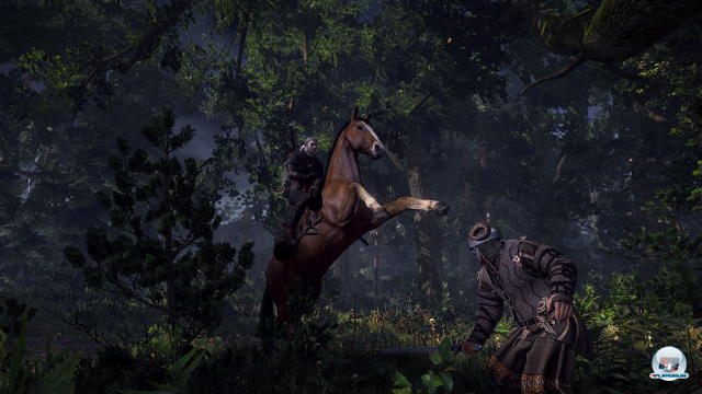 Screenshot - The Witcher 3: Wild Hunt (PC) 92456574