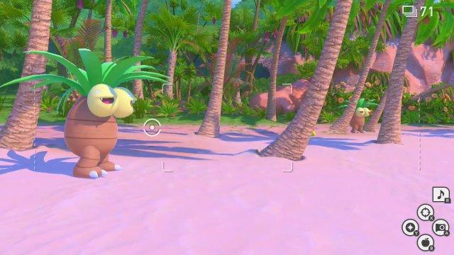Die dezent dümmlich dreinschauenden Kokowei sind seit der allerersten Pokémon-Generation dabei - hier am Palmenstrand sind sie (fast) gut getarnt.