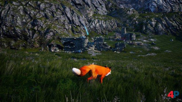 Screenshot - Spirit of the North (PC)