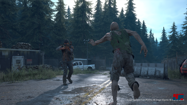 Screenshot - Days Gone (PS4) 92566639