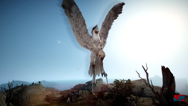 Screenshot - Black Desert Online (PC) 92532547