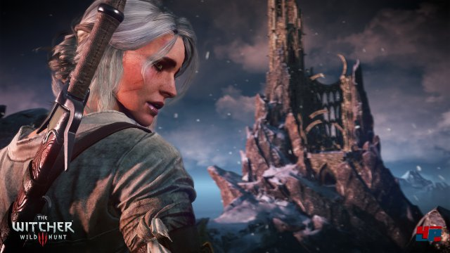 Screenshot - The Witcher 3: Wild Hunt (PC) 92484549