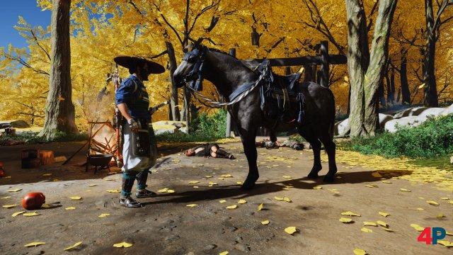 zu Beginn könnt ihr euch eines von drei Pferden aussuchen und einen Namen dazu.