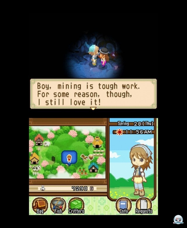 Screenshot - Harvest Moon: The Tale of Two Towns (NDS) 2232078