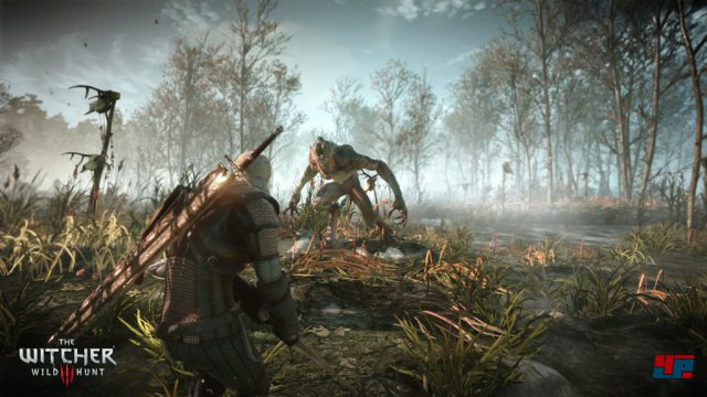Screenshot - The Witcher 3: Wild Hunt (PC) 92484848
