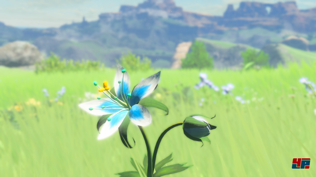 Screenshot - The Legend of Zelda: Breath of the Wild (Switch) 92538507