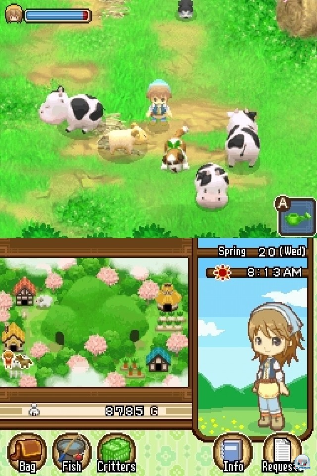 Screenshot - Harvest Moon: The Tale of Two Towns (NDS) 2232002