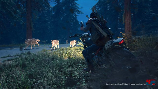 Screenshot - Days Gone (PS4) 92567118