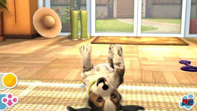Screenshot - Pets (PS_Vita) 92485320