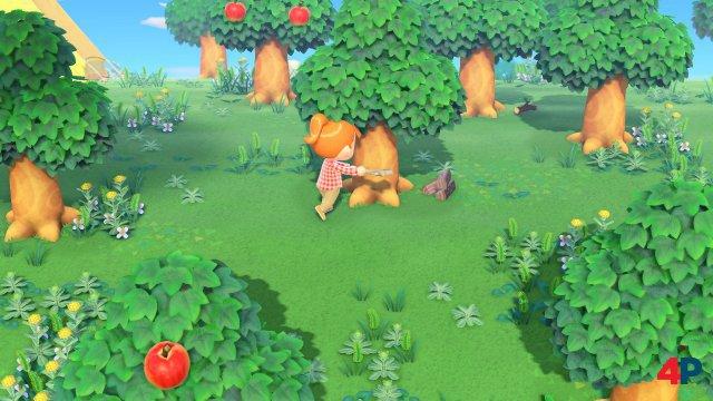 Screenshot - Animal Crossing: New Horizons (Switch) 92590030