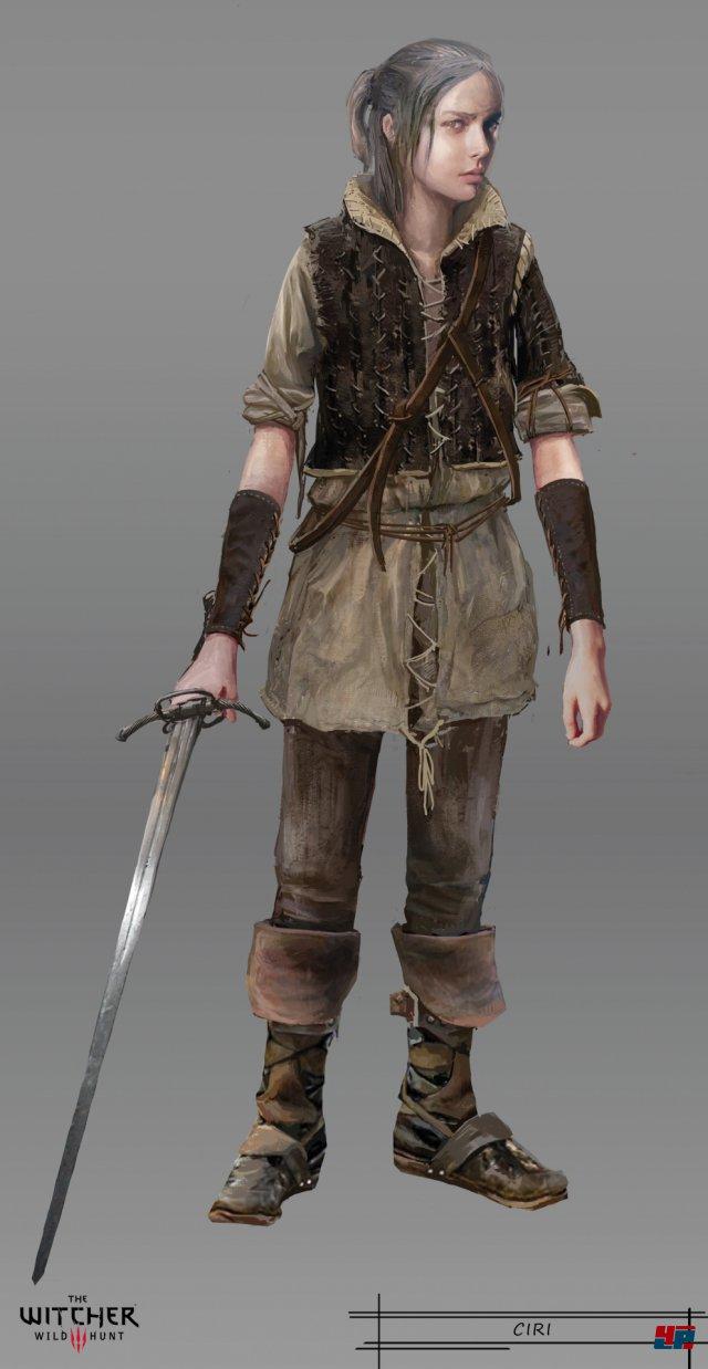 Screenshot - The Witcher 3: Wild Hunt (PC) 92496469